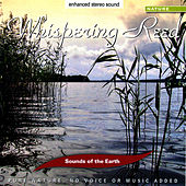 Whispering Reed de Sounds Of The Earth