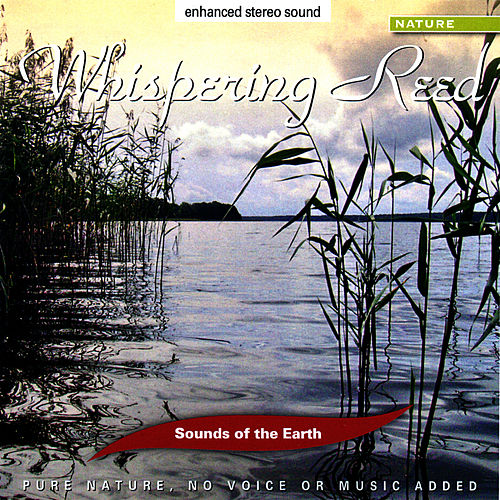 Whispering Reed by Sounds Of The Earth