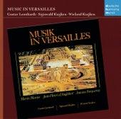 Musik in Versailles by Sigiswald Kuijken