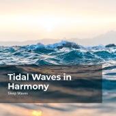 Tidal Waves in Harmony de Sleep Waves