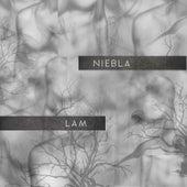 Niebla by LAM