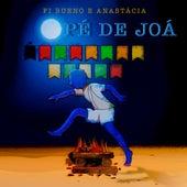 Pé de Joá von Fi Bueno & Anastácia