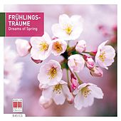 Dreams of Spring von Various Artists