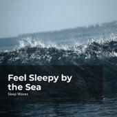 Feel Sleepy by the Sea de Sleep Waves