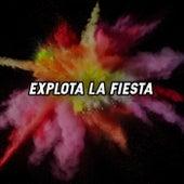 Explota La Fiesta von Various Artists