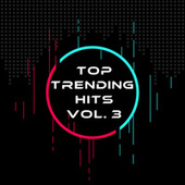 Top Trending Hits Vol. 3 by Various Artists