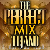 The Perfect Mix - Tejano by Various Artists