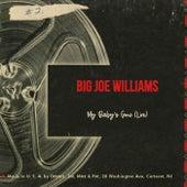 My Baby's Gone (Live) by Big Joe Williams