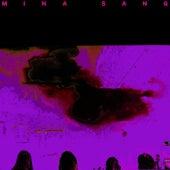 Mystère magnifique (dans la nuit) de Mina Sang