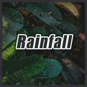 Rainfall von Nature Sounds Nature Music (1)