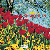Berühmte Rhapsodien de Various Artists