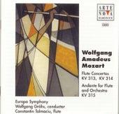 Mozart: Flute Concertos, KV 313 & KV 314; Andante For Flute & Orchestra KV 315 de Constantin Talmaciu