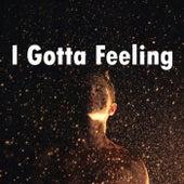 I Gotta Feeling by Heaven is Shining