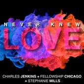 Never Knew Love de Pastor Charles Jenkins