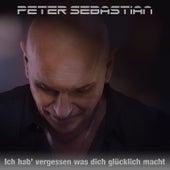 Ich hab' vergessen was dich glücklich macht (Reggaeton Mix) de Peter Sebastian