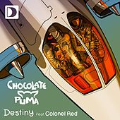 Destiny (feat. Colonel Red) von Chocolate Puma