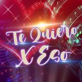 Te Quiero x Eso (Remix) de Dj Cumbio