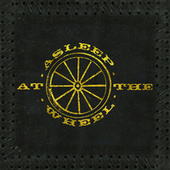 There You Go Again (feat. Lyle Lovett) by Asleep at the Wheel