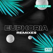 Euphoria (Remixes) by Flawx
