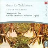 French Horn Music - FRANCK/ SCHEIN/ MOLTER/ HAYDN/ ROSSINI/ MENDELSSOHN/ SCHUBERT/ BRAHMS by Various Artists
