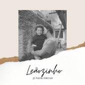 Leãozinho (Cover) de Junior Dread
