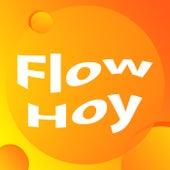 Flow hoy de Various Artists