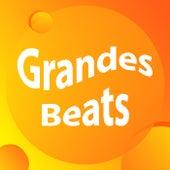 Grandes Beats fra Various Artists