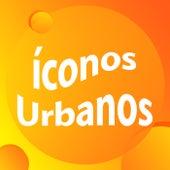 Iconos Urbanos Hits de Various Artists
