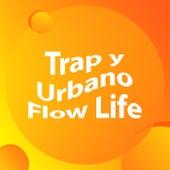 Trap y Urbano Flow Life de Various Artists