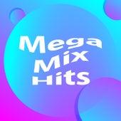Mega  Mix Hits de Various Artists