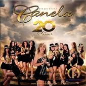 20 Años by Orquesta Canela