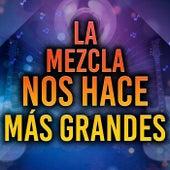 La Mezcla Nos Hace Más Grandes de Various Artists