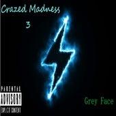 Crazed Madness 3 by Greyface