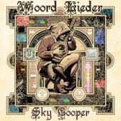 Woord Lieder de Sky Cooper