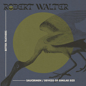 Saucermen / Devices of Similar Size by Robert Walter
