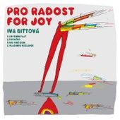 Pro radost (Live) by Iva Bittova