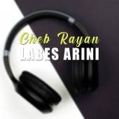 Labes Arini de Cheb Rayan