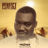 Perfect Picture (For All Fathers) de Voltage