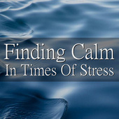 Finding Calm In Times Of Stress by Royal Philharmonic Orchestra