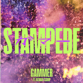 Stampede (feat. Fatman Scoop) by Gammer