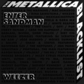 Enter Sandman by Weezer