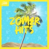 Zomer Hits de Various Artists