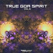 True Goa Spirit, Vol. 6 (Goa Trance Dj Mixed) by Goa Doc