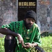 Healing de Tarrus Riley