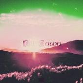 Till' Dawn by Paco