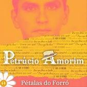 Pétalas do Forró: 1 von Petrúcio Amorim