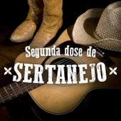 Segunda Dose de Sertanejo de Various Artists