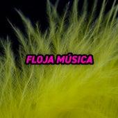 Floja Música de Various Artists