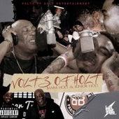 Voltz Of Holt by Bamm Holt