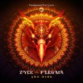 Sun Bird by Zyce